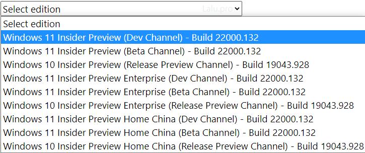 pilih edisi windows 11 iso yang akan anda download
